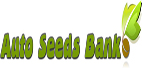 Auto Seed Bank Cannabis Seeds