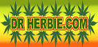 Dr Herbies Cannabis Seeds