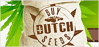 Buy Dutch Seeds