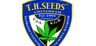 Th Marijuana Seeds